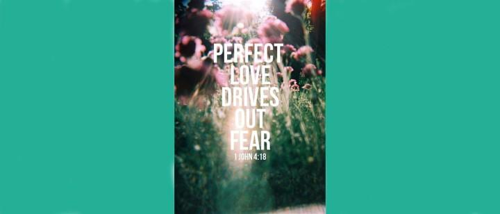 no-fear2