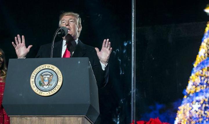 Donald Trump speaks at tree lighting ceremony